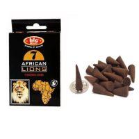 عود مخروطی شیر آفریقایی تکی